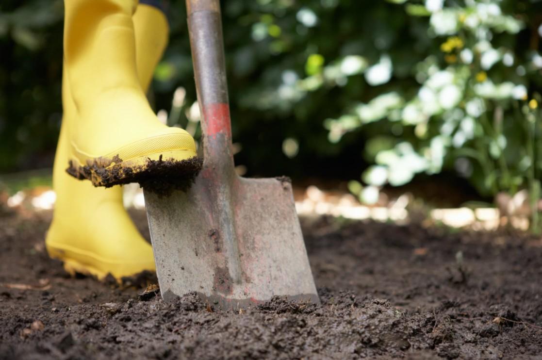How To Choose The Perfect Garden Spade