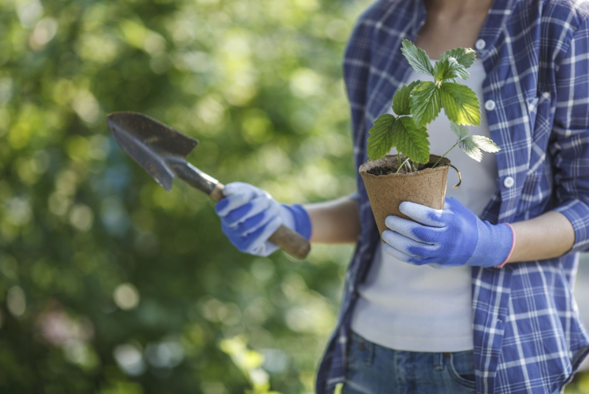 How To Choose The Right Gardening Gloves